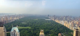 Summers Above Central Park