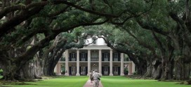 Louisiana to Tennessee: From Beautiful Oak Alley Plantation to the Kitsch of Graceland