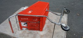 Shopping Cart Gets Cement Shoes In Williamsburg Park