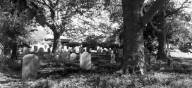 Halloween Reading: Grave's End – A Haunting In Brooklyn