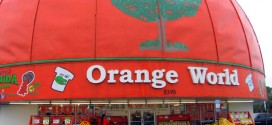 The Best Sandwich in the Universe, Plus Gatorland, Orange World, & Other Orlando Tidbits