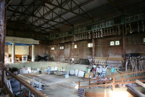 Scouting The Ruins of Jay Gould's Indoor Pool